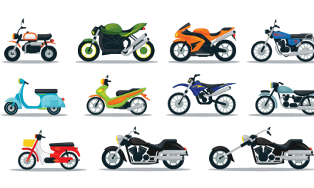What Type of Motorcycle is Best for a Beginner?